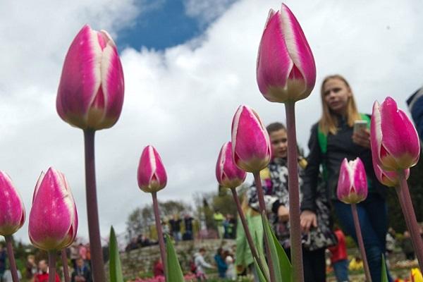Международный женский день в Таганском парке