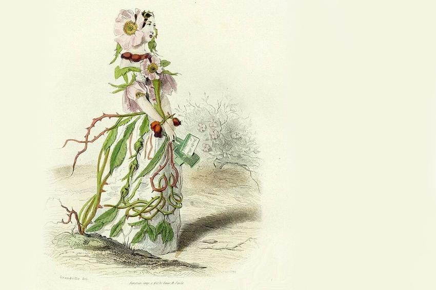 Выставка ботанической иллюстрации Ж. Гранвиля «Ожившие цветы»