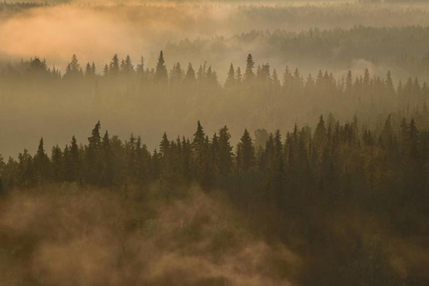 Выставка фотографий «Первозданная Россия. Избранное»