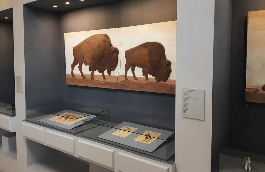 Постоянная экспозиция «Жемчужины ступинской галереи»