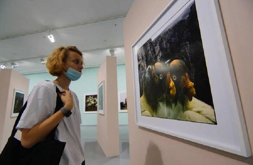 Выставка фотографий Франка Орвата «Бестиарий»