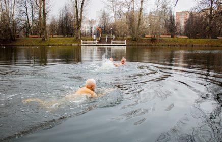 Фотовыставка «Моржи Воронцовского парка»