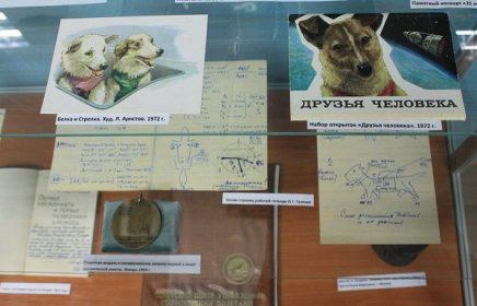 Музей собаки
