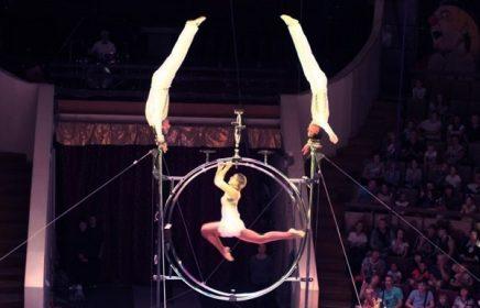 Выставка «Цирк зажигает огни!»